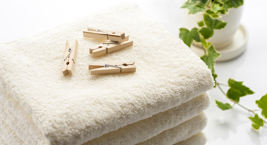 Efeu-Waschmittel: So einfach kannst du Waschmittel selber machen